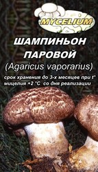 Семена грибов,  споры грибов,  мицелий вешенки,  шампиньона Недорого
