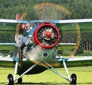 Авиация для защиты подсолнечника,  кукурузы от гусени лугового мотылька