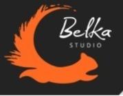 Белка Студио предоставляет ИТ услуги