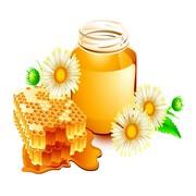Скупаю мед с антибиотиком