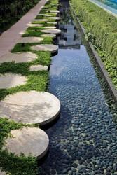 Viva la Green - растения и дизайн