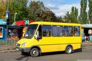 Водитель маршрутного такси категории Д